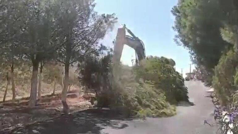 CHPli belediyenin ağaç katliamını gözyaşlarıyla anlattı
