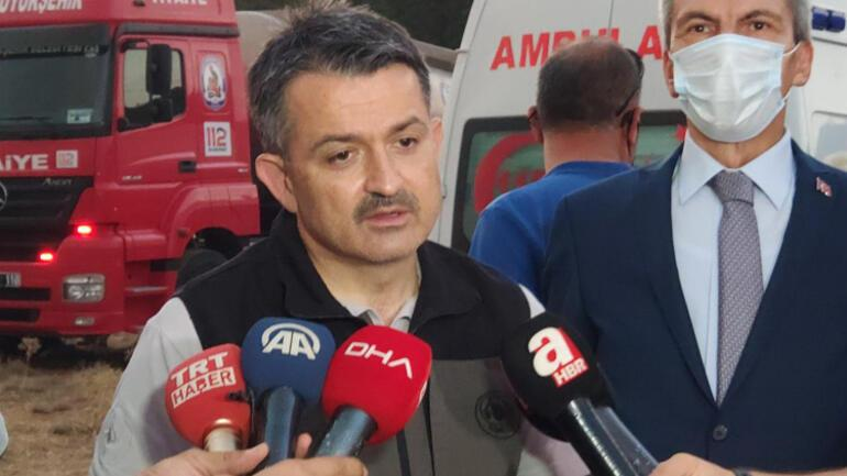 Forest fire in Denizli spread to Burdura