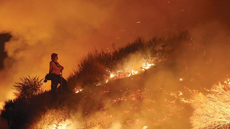Orman yangınları kısır döngü yaratıyor