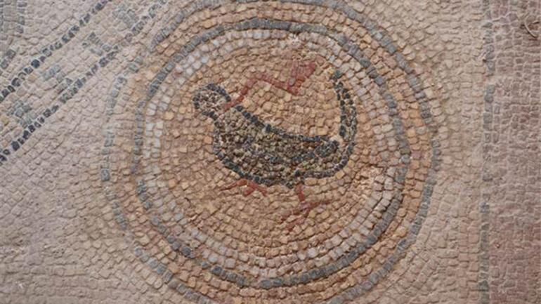 Balatlar Kazısında, Zeugma'dakilere benzer mozaikler bulundu - Son Dakika  Haberleri
