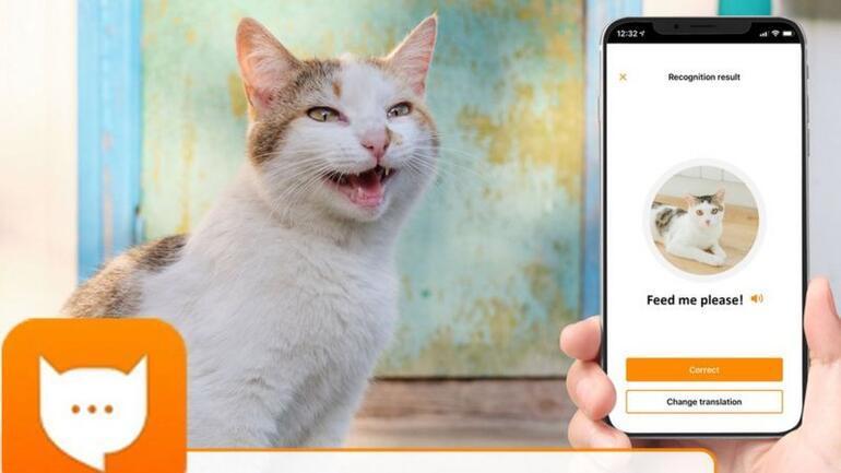 Kedilerin miyavlamalarını tercüme eden uygulama