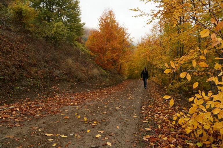 Küre Dağlarının bir yanı sonbahar bir yanı kış