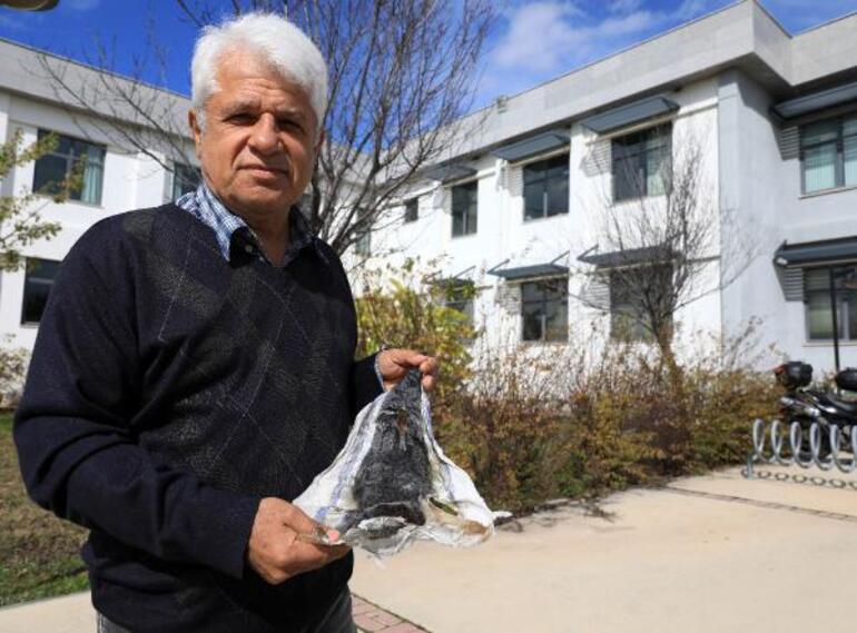 Prof. Gökoğlundan Balon balığının derisi cüzdan yapılsın önerisi