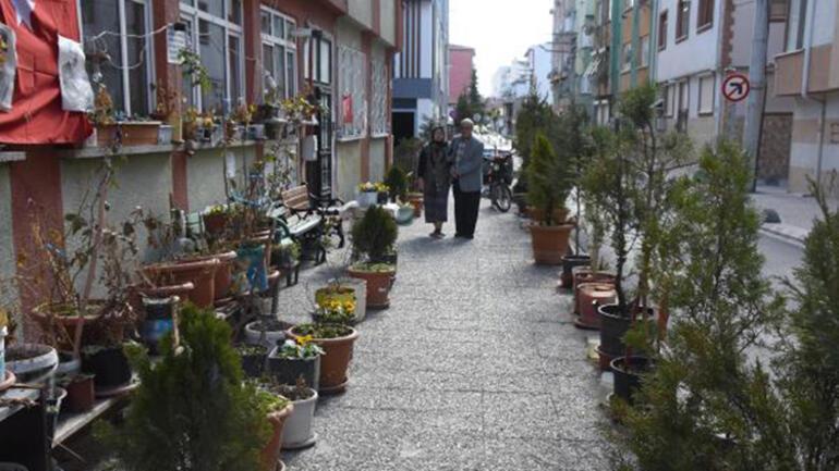 Felç geçiren eşi için sokağı çiçek bahçesine çevirdi