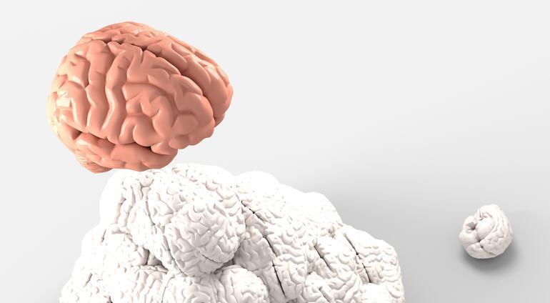 Korona salgını bitmeden başladı... Kanadada gizemli beyin hastalığı panik yarattı