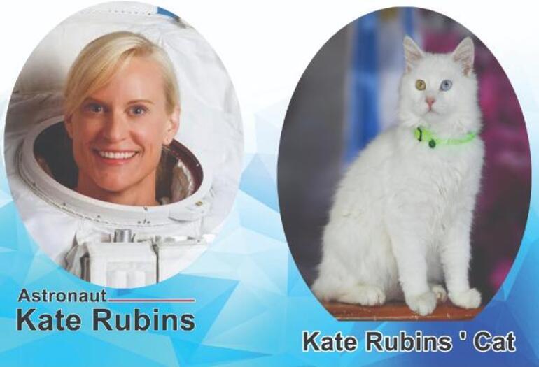 Van Gölü fotoğrafıyla birinci olmuştu Astronot Kate Rubinsin kedisi hazır... Özel oda tahsis edildi