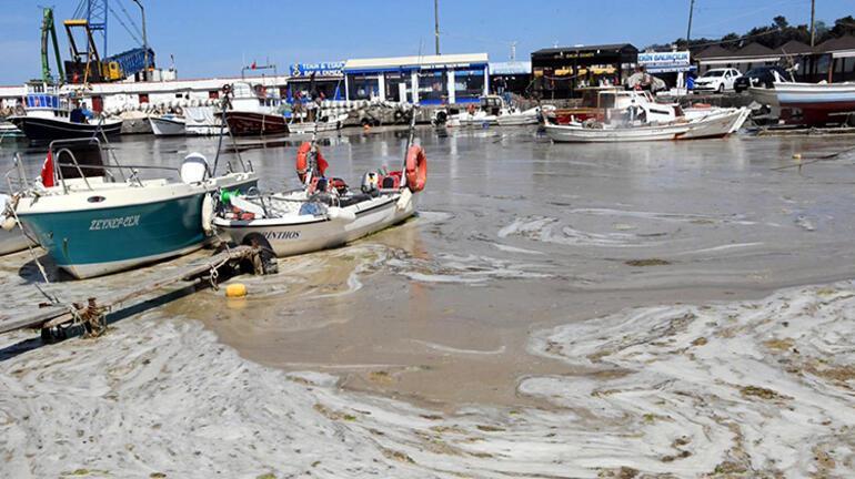 Kötü kokuyor, aylar önce geldi ve gitmiyor... Deniz salyası Marmara'yı esir aldı