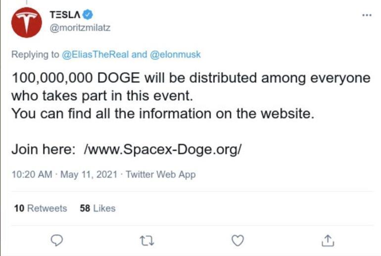 Elon Muskı izleyeceğim derken avlandılar 10 milyon dolar buhar oldu