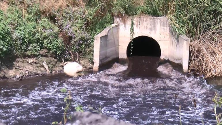 Nilüfer Çayında korkutan görüntü Siyaha büründü: Bu artık su değil
