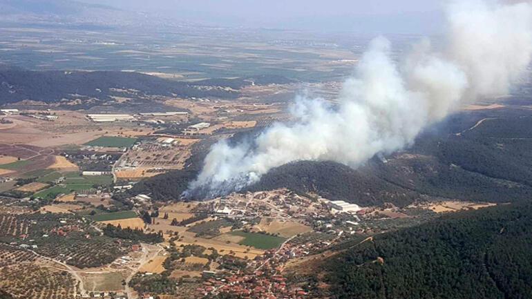 Son dakika: İzmirdeki orman yangının nedeni belli oldu Foça Kaymakamından açıklama