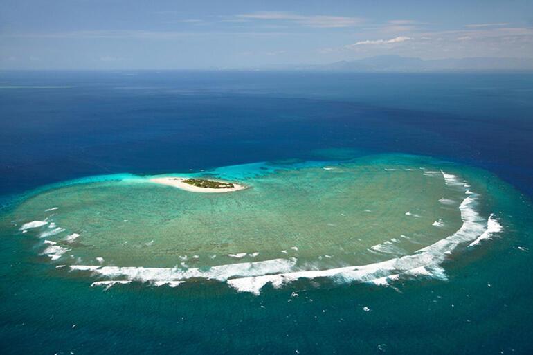 Bir bağış yaptı, sırları ortaya çıktı Google kurucusunun pandemi adası...