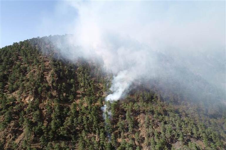 Son dakika... Kayserinin Yahyalı ilçesindeki Aladağlar Milli Parkında yangın