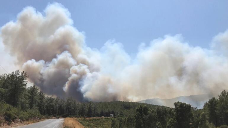 Son dakika... Yangın kâbusu giderek büyüyor... Muğla'nın Bodrum ilçesinde  yangın! Ekipler bölgeye sevk edildi