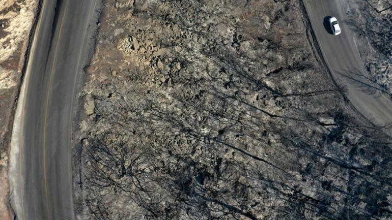 Son dakika: Marmaris yangınında tüyler ürperten görüntü Gün ağarınca ortaya çıktı: Ciğerlerimiz yandı