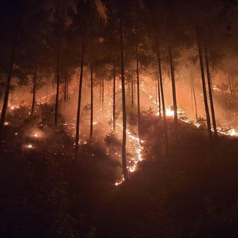 Son dakika haberi... İzmir, Muğla, Antalya, Adana, Mersin, Konya, Kastamonu ve Kahramanmaraştaki orman yangınlarında son durum