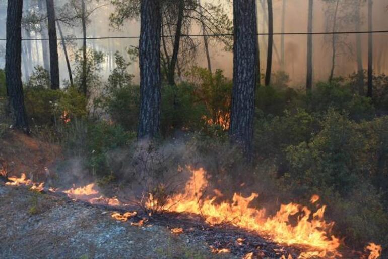 Son dakika... Marmaris orman yangını son durum bilgileri: Karayolu ulaşıma kapatıldı
