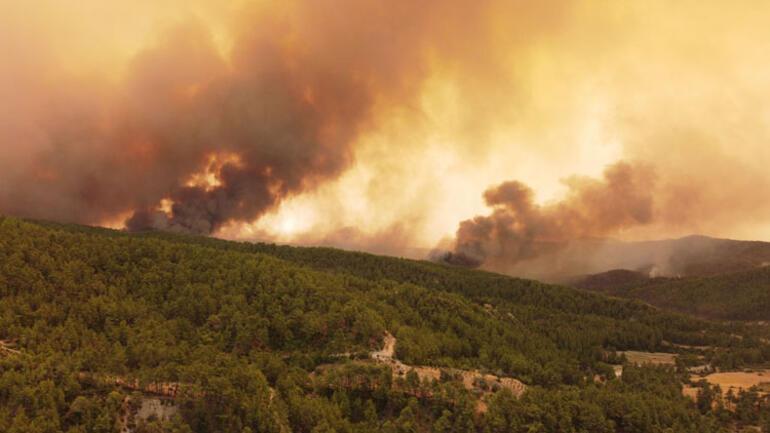 Son dakika... Sırtköydeki yangında son durum... Dün akşamdan beri sürüyor Alevlerin büyüklüğü 20 metreyi buldu...