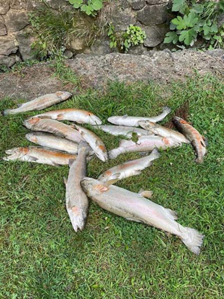 Sapancada korkutan görüntü Bu suda balıklar yaşamadı, insanoğlu bu suyu iyi mi içecek