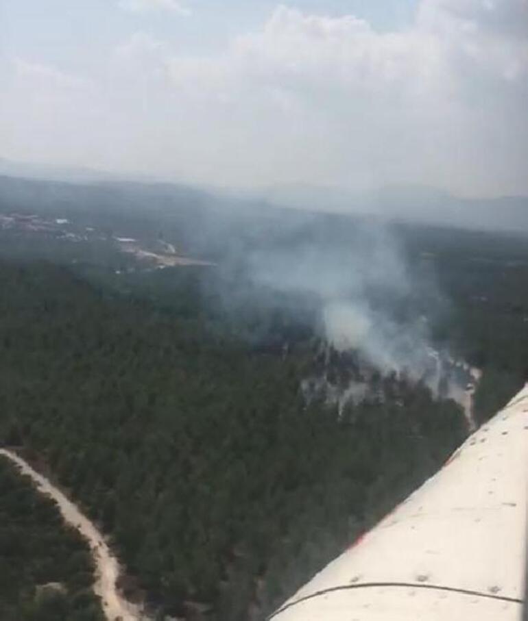 Son dakika Manisada orman yangını