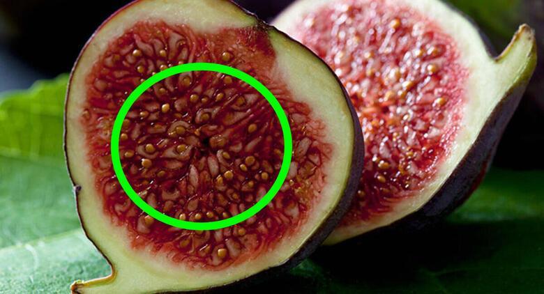 Öğrendiğinizde şok olacaksınız! Yediğiniz incirin içerisinde...