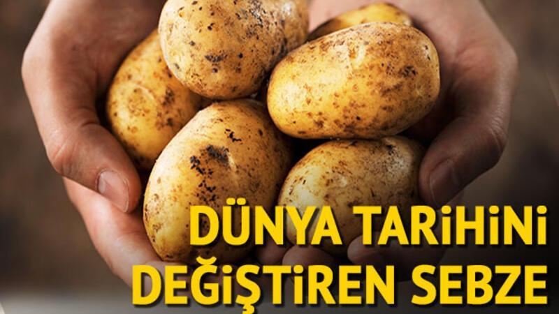 Dünya tarihini değiştiren sebze: Patates