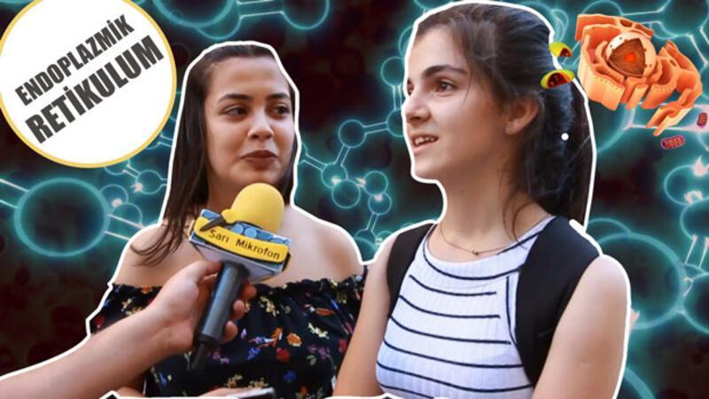 Sokağın biyoloji ile imtihanı! | Sarı Mikrofon