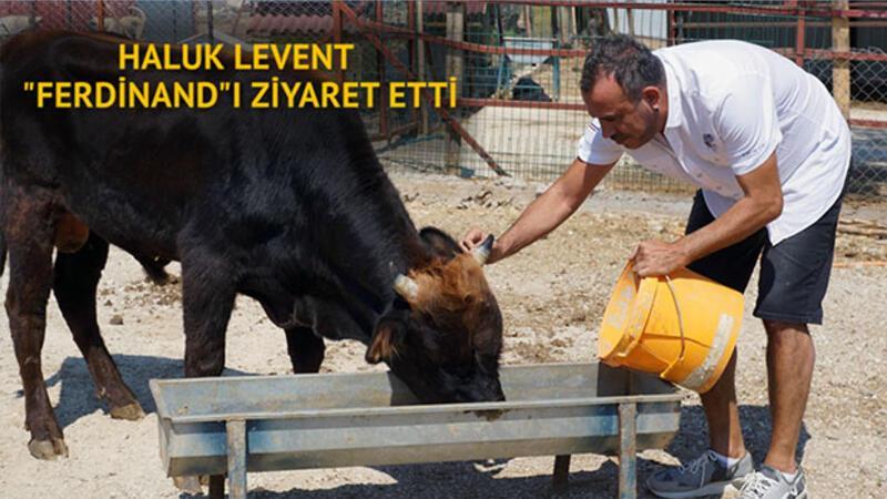 """Haluk Levent """"Ferdinand""""ı ziyaret etti"""