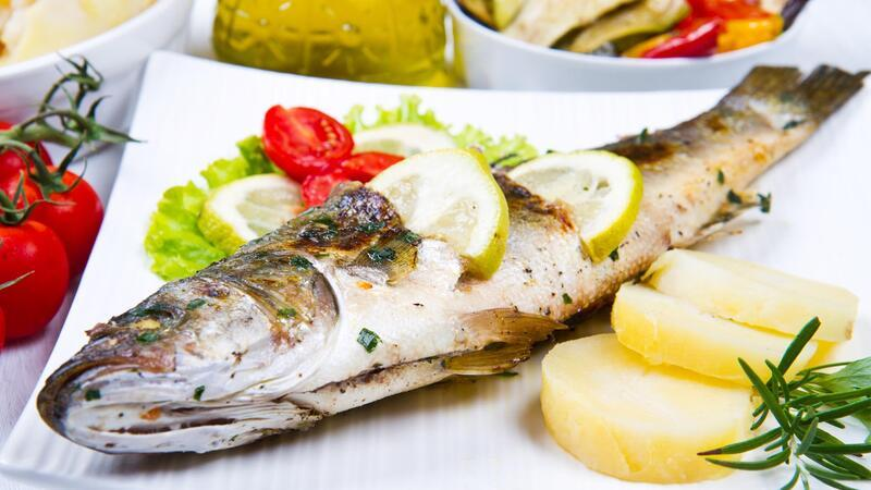 Balık 101