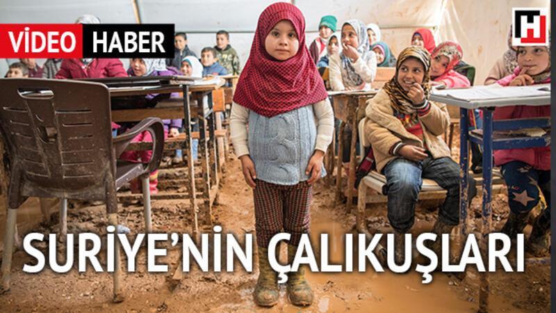 Suriye'de eğitim mucizesi