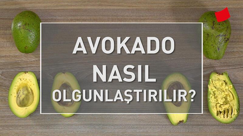 Avokado Nasıl Olgunlaştırılır? | Mucize Lezzetler