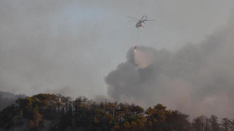 Seyitgazi'de orman yangını çıktı