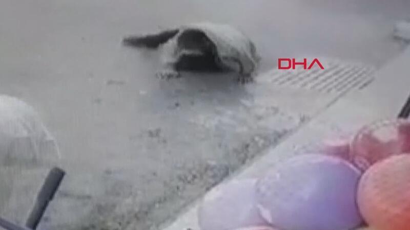 Maltepe'deki pompalı tüfekle saldırı kamerada