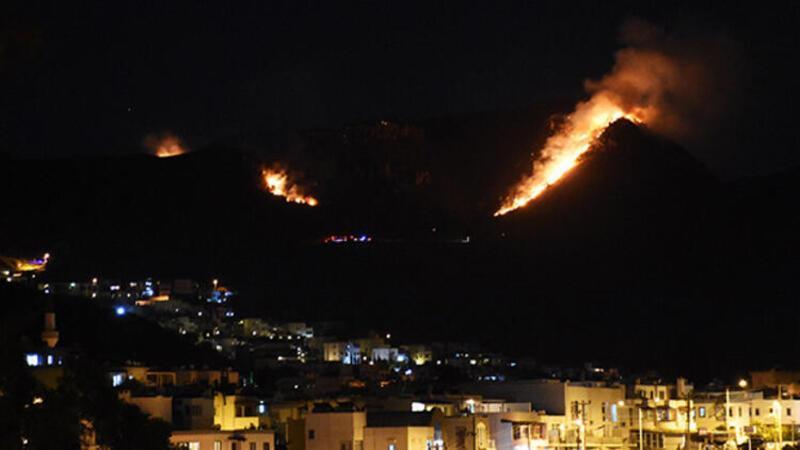 Bodrum ilçesinde makilik alanda yangın çıktı