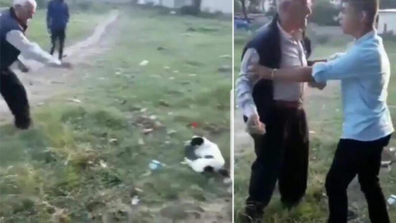 Köpeğe ve kendine engel olmaya çalışan çocuğa taş attı