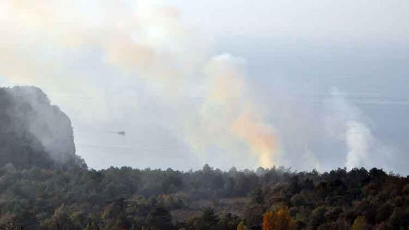 Bartın'da orman yangını