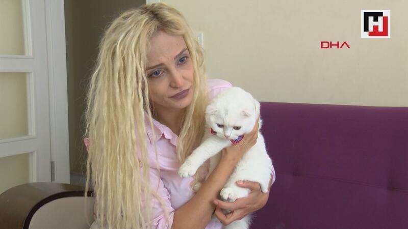 Kedileri vahşice öldürüldü, eski sevgilisi hakkında suç duyurusunda bulundu