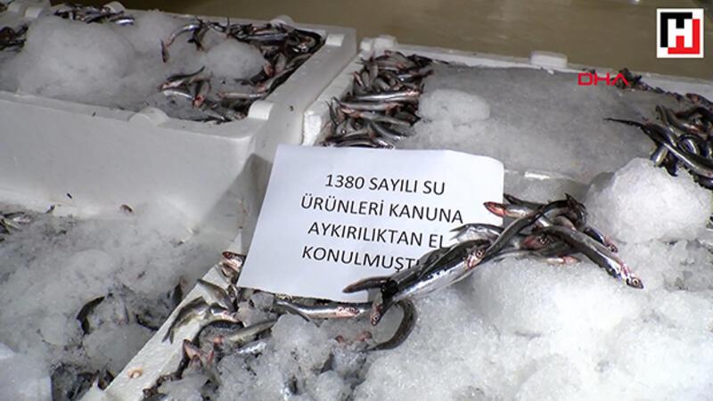 Marmara Denizi'nde balık avı denetimi