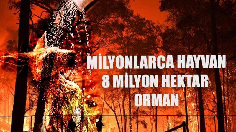 8 milyon hektar orman-366 bin insan!