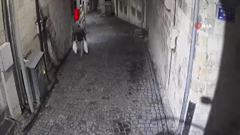Güvercin hırsızları kameralardan kaçamadı
