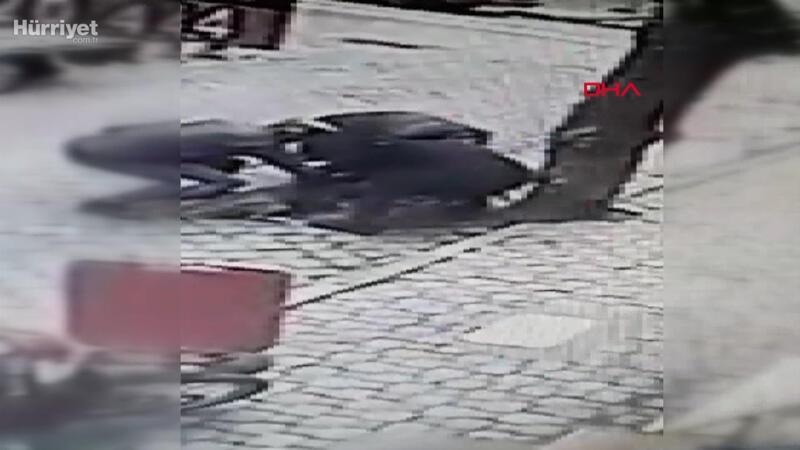 2 pitbullun saldırdığı 'Rus Finosu' köpeğini vatandaşlar zor kurtardı