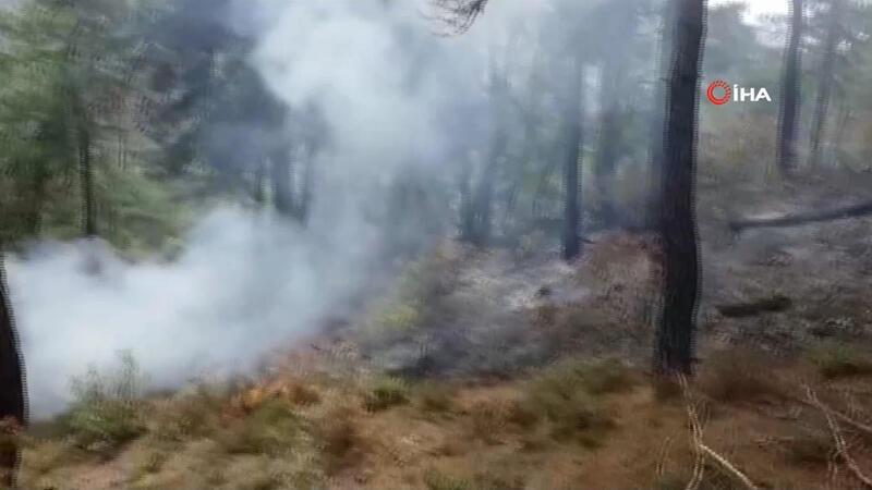 Son dakika! Balıkesir'in Dursunbey ilçesinde orman yangını
