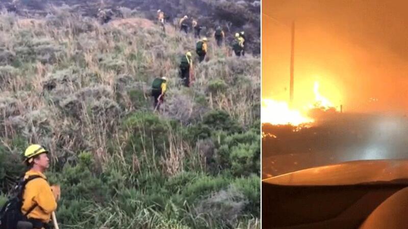 ABD'nin Kaliforniya eyaletinde orman yangını