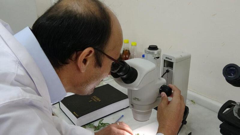 Prof. Dr. Selvi: Virüsten korunalım derken sağlığımızdan olmayalım