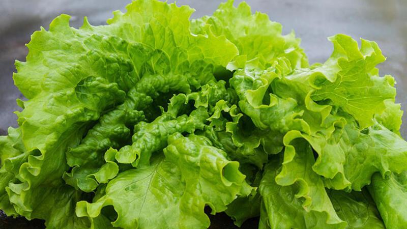 Evde yetiştirilebilecek sebzeler arasında en iyi 10'u seçiyoruz