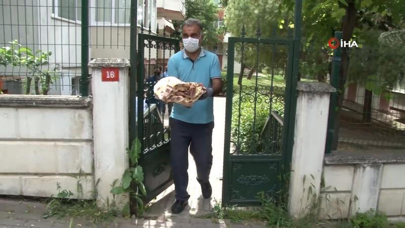 Büyükçekmece'de sitenin bahçesinde yeni doğmuş bebek cesedi bulundu