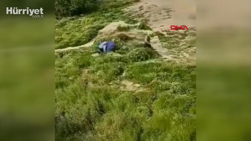 Sultangazi'de polisi görünce otların arasına saklandılar