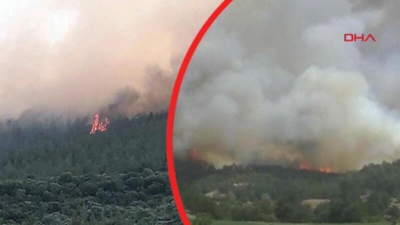 Son dakika... Muğla ve Kütahya'da orman yangını!