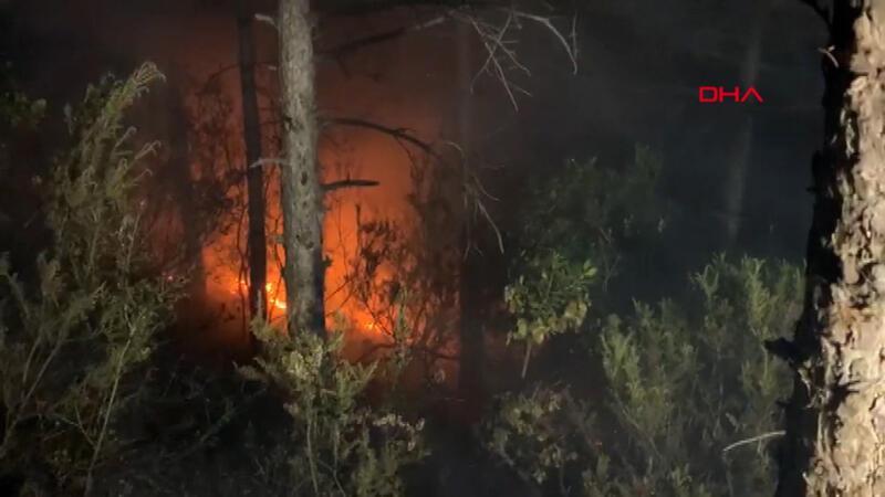 İstanbul Aydos Ormanı'nda yangın