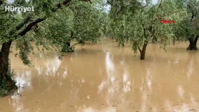 İznik'te sağanak; tarım arazilerinde zarar büyük