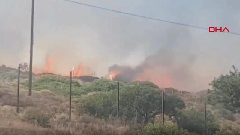 Son dakika... Muğla'nın Bodrum ilçesinde yangın